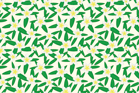 Floral seamless pattern. Hawaiian plumeria flower and leaves seamless pattern. Floral print. White background. Print for textile or web .