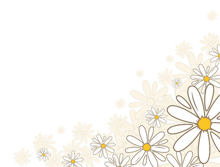 Bottom corner oxeye daisy flower decoration. National flower of Denmark, Latvia, Russia. Vector illustration. Illustration