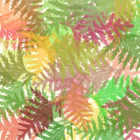 葉のカーペット。