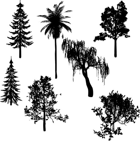 Black Bomen silhouet Stock Illustratie