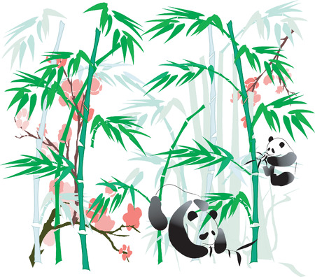 Panda and Bamboo abstract. Illusztráció