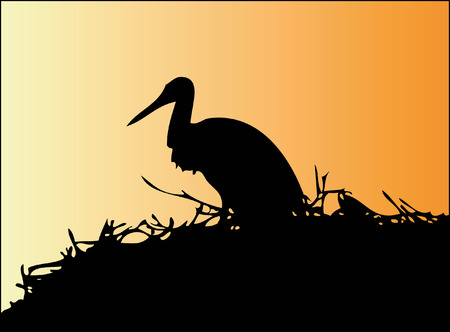 Silhouette Stork (Ciconia)