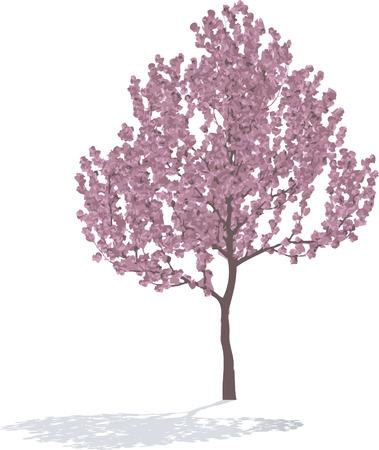 Tree spring 向量圖像