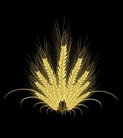 秋の大麦。  イラスト・ベクター素材