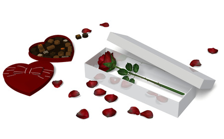 Red Rose in a box on white background with box of  Chocolate.