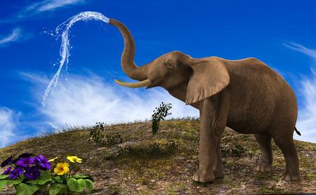 elephant watering the garden with its trunk. 版權商用圖片