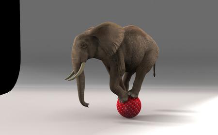 Elefante en la esfera. Foto de archivo - 39231799