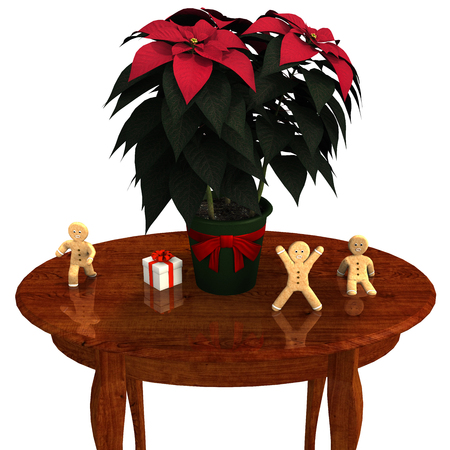 Poinsettia and Gingerbread .