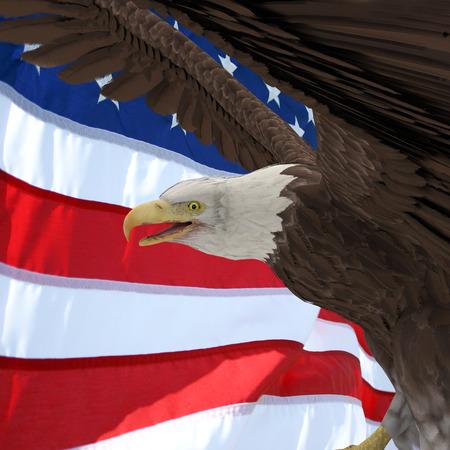 usa flag and silhouette eagle profil. 2