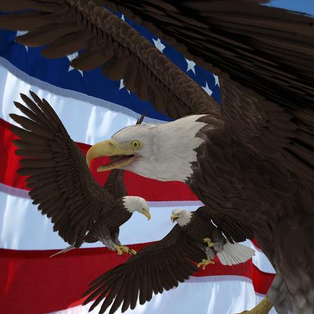 USA vote.