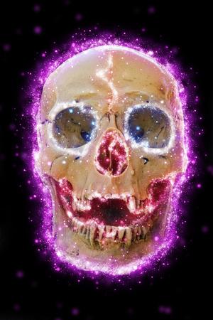 Skull cranium.
