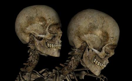 Skull head.