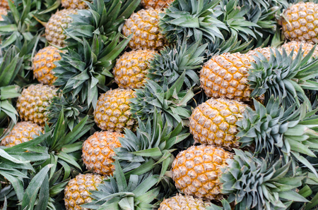 a lot of pineapple at Thai market