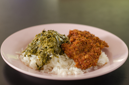 Rice with fried pork and curry called  (Thai Food)