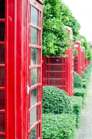 British red telephone box with old fashioned with green tree background in London, United Kingdom