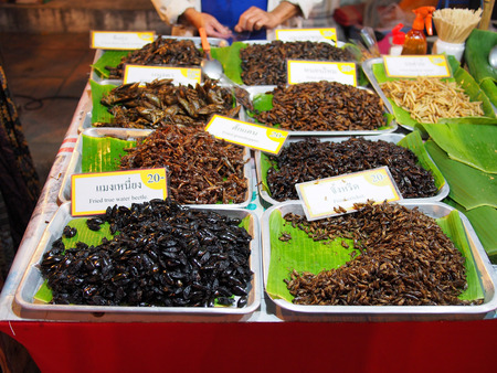 sunday market: The insects stand, sunday market, Chiang Mai Stock Photo