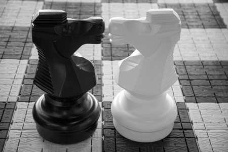 sexual orientation: Black and white chess pieces kissing Stock Photo