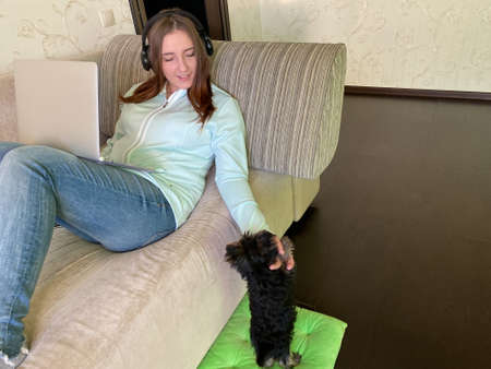 Happy young female working from home laptop sofa small dog Stok Fotoğraf
