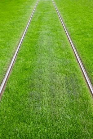 Straßenbahnschienen umgeben von grünem Gras