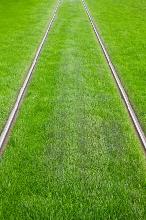 maintained: Tram tracks surrounded by green grass Stock Photo