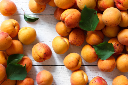 blush: Whole orange apricots with red blush and leaves. Background from above.