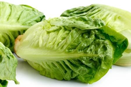 lettuces: Group of Gem lettuces on white background.