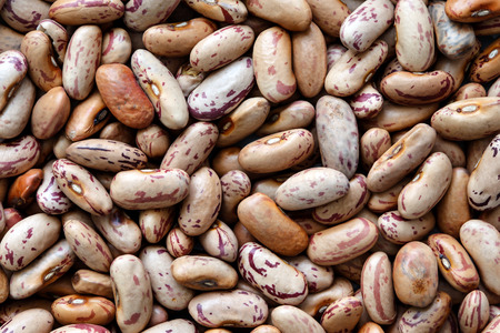 Background of dry pinto beans.