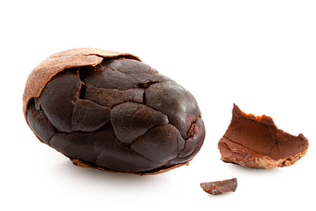 One roasted partly peeled cocoa bean isolated on white.