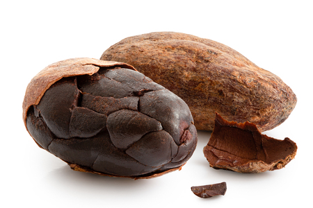 One roasted partly peeled and one unpeeled cocoa bean isolated on white.