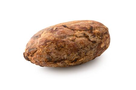 Single roasted unpeeled cocoa bean isolated on white.