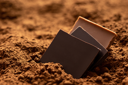 Three squares of dark and milk chocolate sitting in cocoa powder.