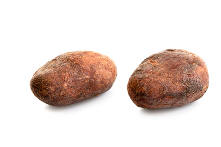Two roasted unpeeled cocoa beans isolated on white. Imagens