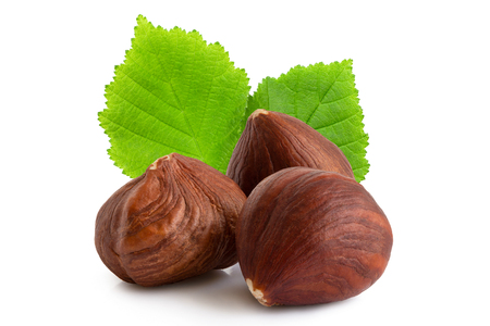 Three hazelnuts with skin and leaves isolated on white. Closeup.
