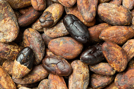 Background of roasted unpeeled and peeled cocoa beans. Imagens