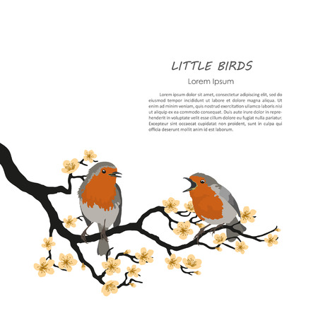 two birds: Two birds sitting on a flowering branch. Vector illustration