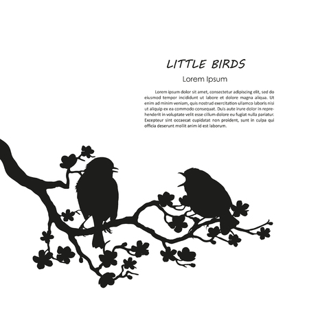 two birds: Silhouette of two birds sitting on a flowering branch. Vector illustration Illustration