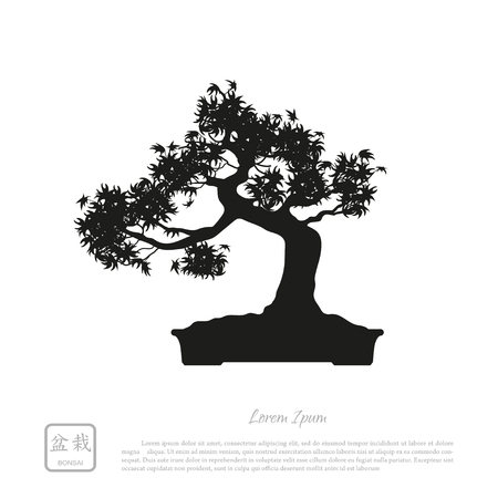 Black silhouette of a bonsai on a white background. Detailed image. Vector illustration