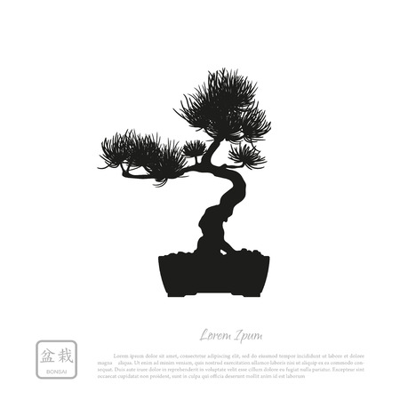 detailed image: Black silhouette of a bonsai on a white background. Detailed image. Vector illustration Illustration