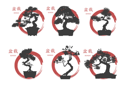 Bonsai set. Black silhouette of a bonsai on a white background. Detailed image. Vector illustration 向量圖像