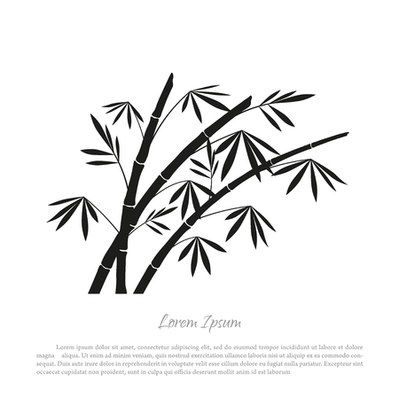 black and white: Black bamboo silhouette on a white background. Vector illustration