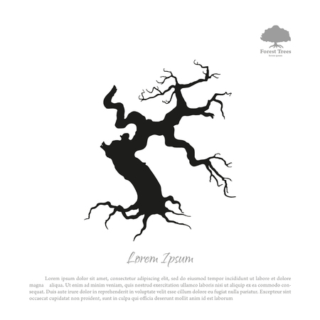 Silhouette of the old broken tree on a white background. Black dead plant. Vector illustration
