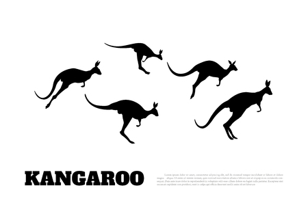 Black silhouettes of jumping kangaroos on a white background. Isolated drawing of a wallaby