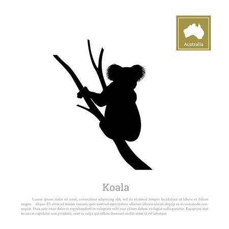 Silueta negra del koala en el fondo blanco. Animal de Australia