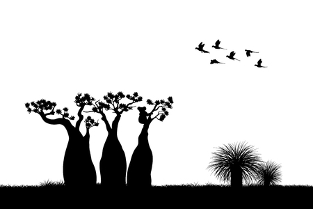 Black silhouette of koala and parrots on white background.
