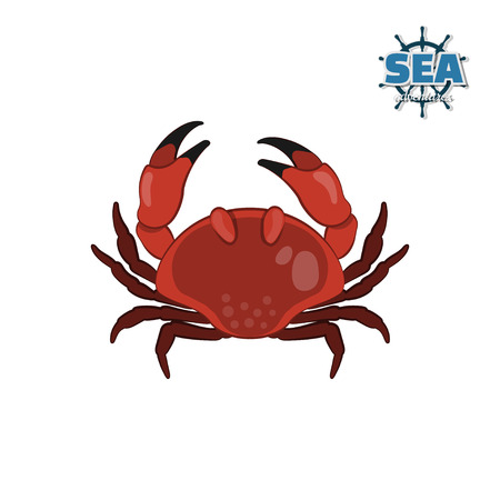 humor: Crab in cartoon style on a white background. Isolated drawing