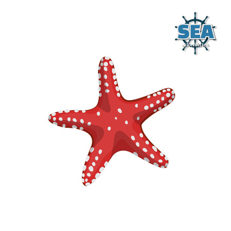 Red starfish on a white background. Isolated drawing