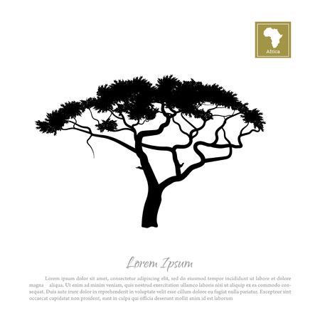 tanzania: Black silhouette of a tree and white background. African nature. Umbrella acacia Illustration