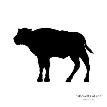 Silhouette noire de veau de bison sur fond blanc. Dessin isolé de jeune buffle. Image de taureau sauvage. Animaux d'Amérique du Nord