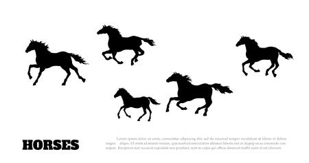 Sagoma nera di cavalli in esecuzione. Disegno dettagliato isolato della mandria di mustang su priorità bassa bianca. Vista laterale. Paesaggio occidentale. Illustrazione vettoriale
