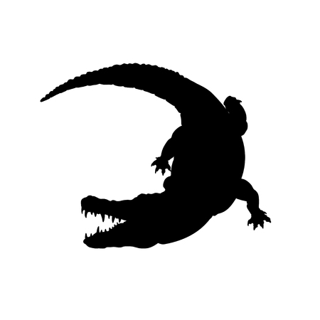 Black silhouette of mississippi alligator. Isolated crocodile image on white background. Animal of North America